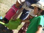 summer program watering plants